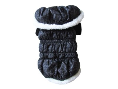 grey and white dog winter coat