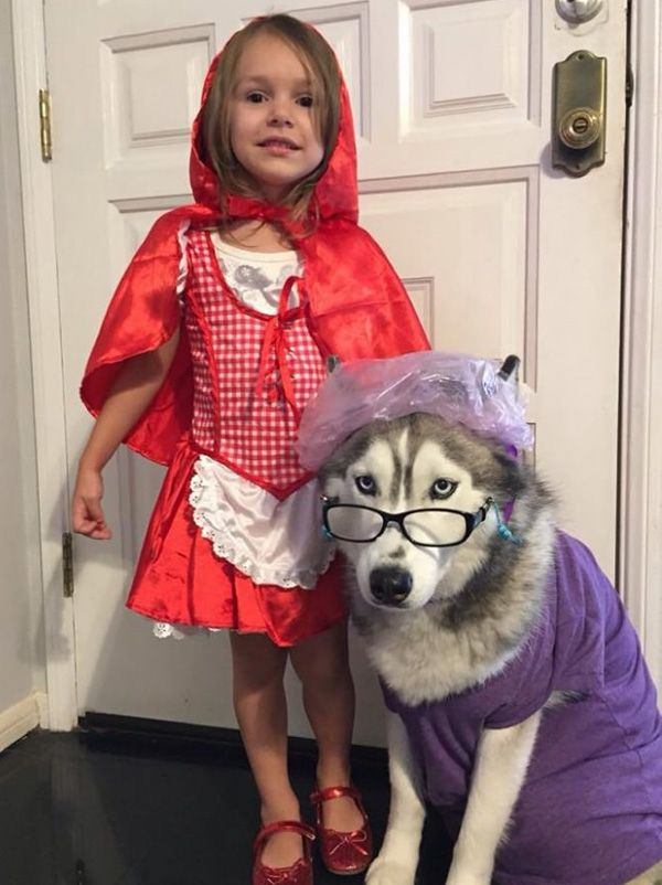 Red Riding Hood and the Big Bad Wolf Dog and kid halloween costume