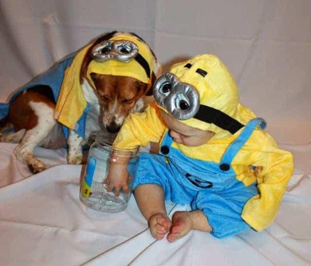 Minions dog and kid Halloween Costume