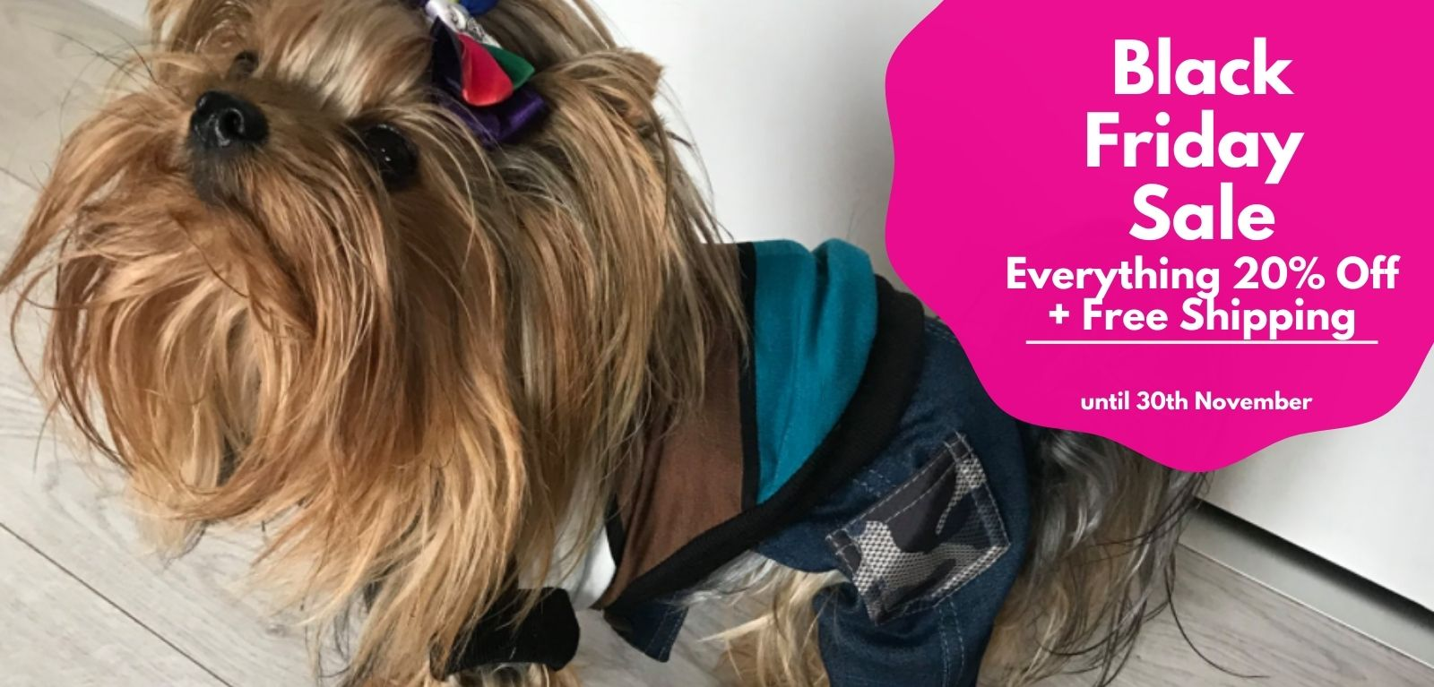Dog clothing and accessories sale